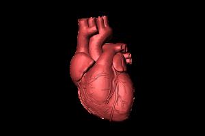 heart-1765298_960_720